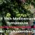 IEEE Mediterranean Microwave Symposium 2019