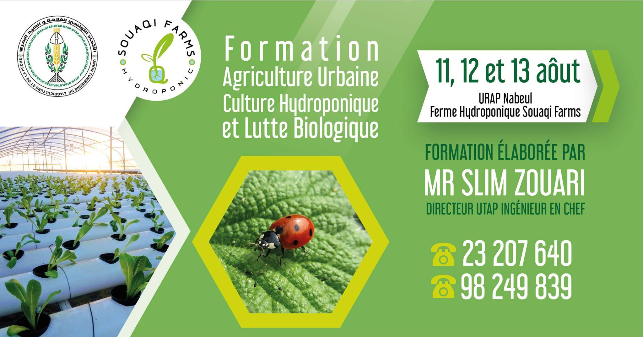 Agriculture Urbaine ,Culture Hydroponique & Lutte Biologique الإتحاد الجهوي للفلاحة والصيد البحري بولاية نابل